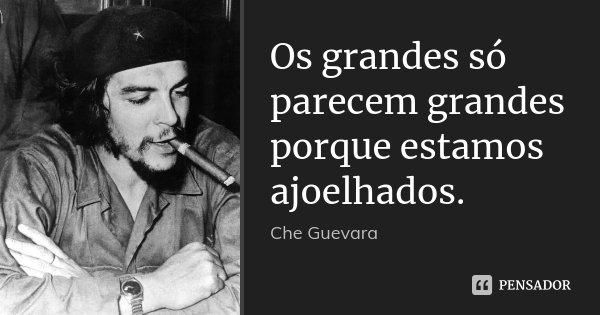 Os grandes só parecem grandes porque estamos ajoelhados.... Frase de Che Guevara.