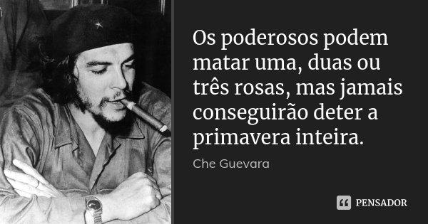 Os poderosos podem matar uma, duas ou três rosas, mas jamais conseguirão deter a primavera inteira.... Frase de Che Guevara.