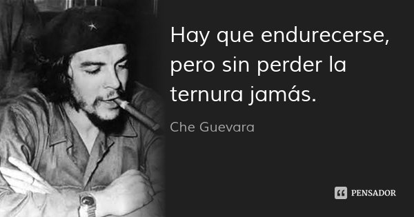 Hay que endurecerse, pero sin perder la ternura jamás.... Frase de Che Guevara.