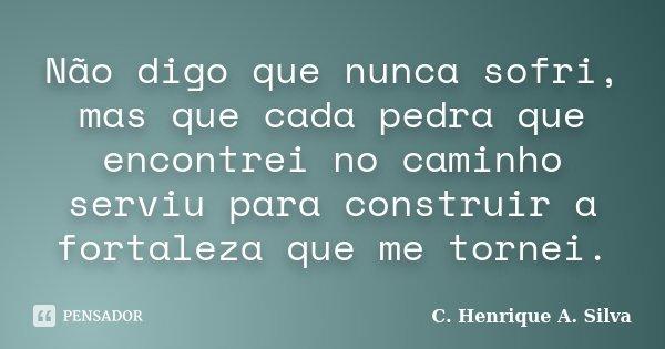 Não digo que nunca sofri, mas que cada pedra que encontrei no caminho serviu para construir a fortaleza que me tornei.... Frase de C. Henrique A. Silva.