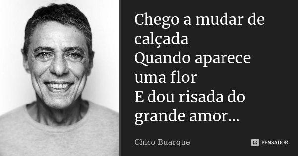 Chego a mudar de calçada Quando aparece uma flor E dou risada do grande amor...... Frase de Chico Buarque.