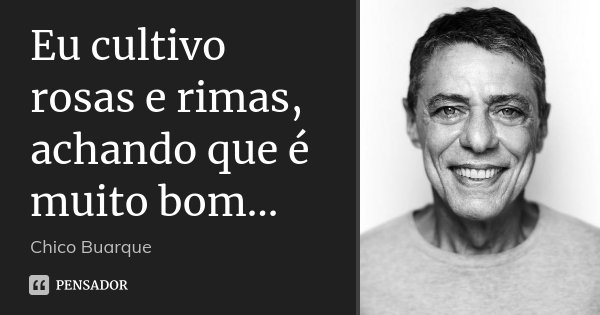 Eu cultivo rosas e rimas, achando que é muito bom...... Frase de Chico Buarque.