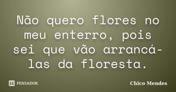 Não quero flores no meu enterro, pois sei que vão arrancá-las da floresta.... Frase de Chico Mendes.