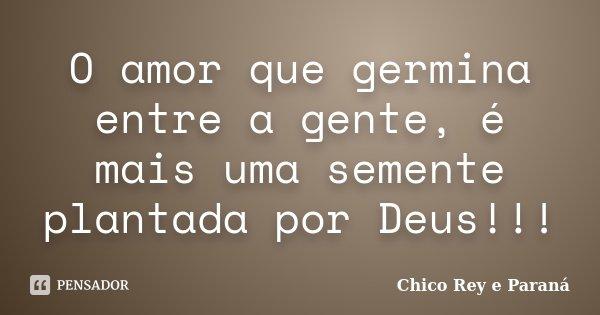 O amor que germina entre a gente, é mais uma semente plantada por Deus!!!... Frase de Chico Rey e Paraná.
