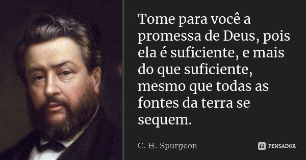 Tome para você a promessa de Deus, pois ela é suficiente, e mais do que suficiente, mesmo que todas as fontes da terra se sequem.... Frase de C. H. Spurgeon.