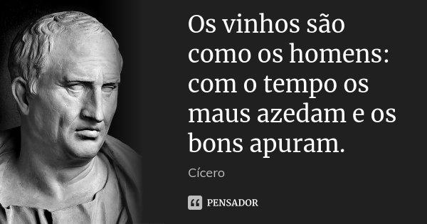 Os vinhos são como os homens: com o tempo os maus azedam e os bons apuram.... Frase de Cícero.