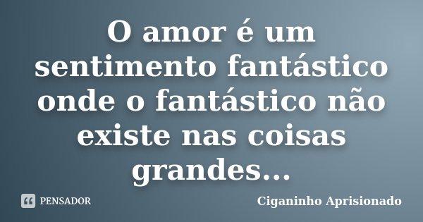 O amor é um sentimento fantástico onde o fantástico não existe nas coisas grandes...... Frase de Ciganinho Aprisionado.