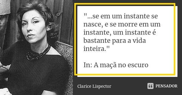 """""""...se em um instante se nasce, e se morre em um instante, um instante é bastante para a vida inteira."""" In: A maçã no escuro... Frase de Clarice Lispector."""