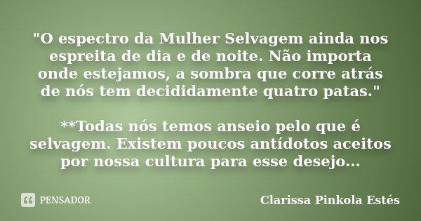 O Espectro Da Mulher Selvagem Clarissa Pinkola Estés
