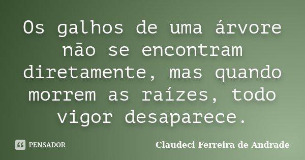 Os galhos de uma árvore não se encontram diretamente, mas quando morrem as raízes, todo vigor desaparece.... Frase de Claudeci Ferreira de Andrade.