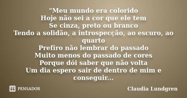 Meu Mundo Era Colorido Hoje Não Claudia Lundgren