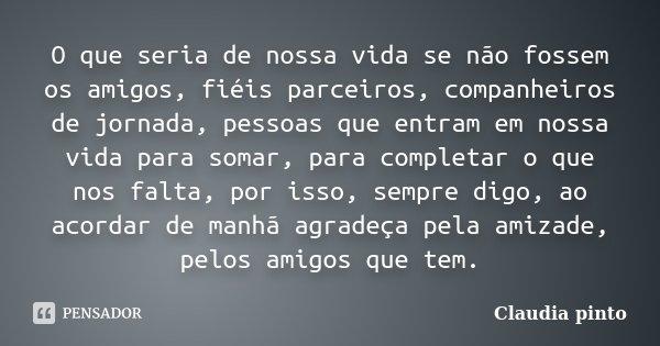 O Que Seria De Nossa Vida Se Não Fossem... Claudia Pinto