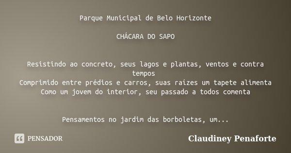 Parque Municipal de Belo Horizonte CHÁCARA DO SAPO Resistindo ao concreto, seus lagos e plantas, ventos e contra tempos Comprimido entre prédios e carros, suas ... Frase de Claudiney Penaforte.