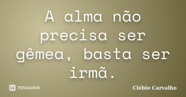 A alma não precisa ser gêmea, basta ser irmã.... Frase de Clébio Carvalho.