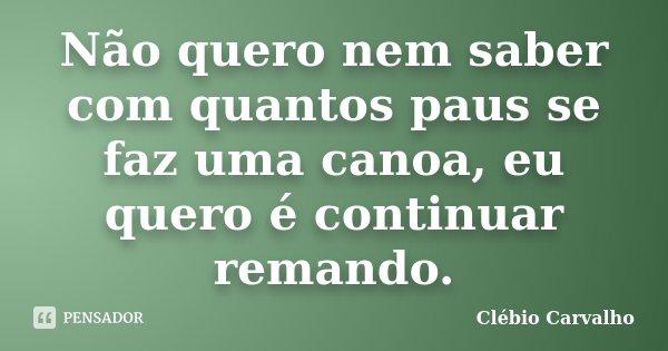 Não quero nem saber com quantos paus se faz uma canoa, eu quero é continuar remando.... Frase de Clébio Carvalho.