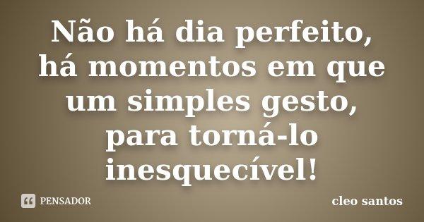 Não há dia perfeito, há momentos em que um simples gesto, para torná-lo inesquecível!... Frase de Cléo Santos.