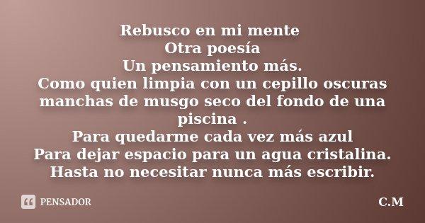 Rebusco En Mi Mente Otra Poesía Un Cm