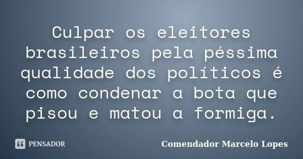 Culpar os eleitores brasileiros pela péssima qualidade dos políticos é como condenar a bota que pisou e matou a formiga.... Frase de Comendador Marcelo Lopes.