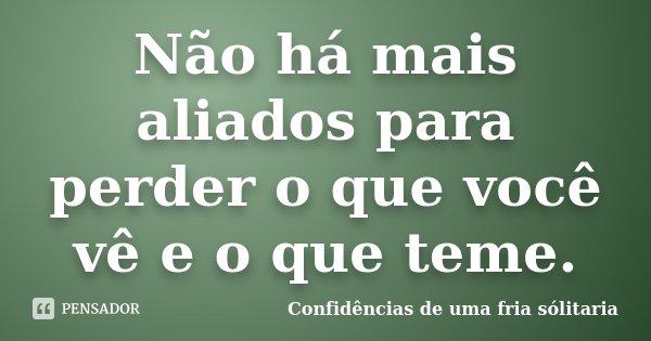 Não há mais aliados para perder o que você vê e o que teme.... Frase de Confidencias_de_uma_fria_solitaria.