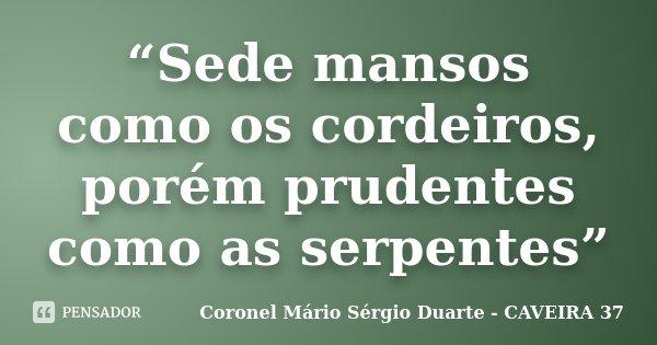 """""""Sede mansos como os cordeiros, porém prudentes como as serpentes""""... Frase de Coronel Mário Sérgio Duarte - CAVEIRA 37."""
