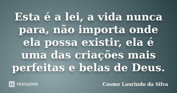 Esta é a lei, a vida nunca para, não importa onde ela possa existir, ela é uma das criações mais perfeitas e belas de Deus.... Frase de Cosme Laurindo da Silva.