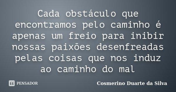 Cada obstáculo que encontramos pelo caminho é apenas um freio para inibir nossas paixões desenfreadas pelas coisas que nos induz ao caminho do mal... Frase de Cosmerino Duarte da Silva.