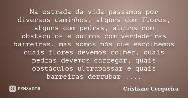 Na estrada da vida passamos por diversos caminhos, alguns com flores, alguns com pedras, alguns com obstáculos e outros com verdadeiras barreiras, mas somos nós... Frase de Cristiane Cerqueira.