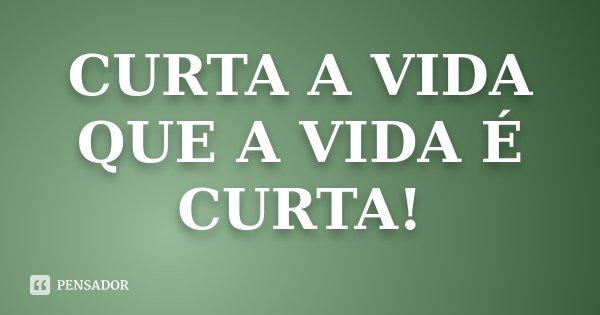 CURTA A VIDA QUE A VIDA É CURTA!... Frase de Desconhecido.