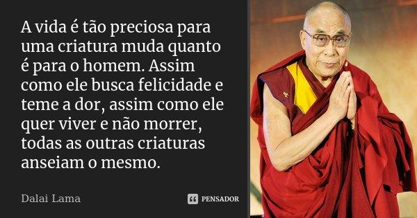 A vida é tão preciosa para uma criatura muda quanto é para o homem. Assim como ele busca felicidade e teme a dor, assim como ele quer viver e não morrer, todas ... Frase de Dalai Lama.