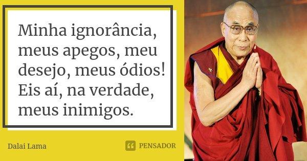Minha ignorância, meus apegos, meu desejo, meus ódios! Eis aí, na verdade, meus inimigos.... Frase de Dalai Lama.