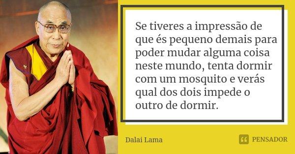 Se tiveres a impressão de que és pequeno demais para poder mudar alguma coisa neste mundo, tenta dormir com um mosquito e verás qual dos dois impede o outro de ... Frase de Dalai Lama.