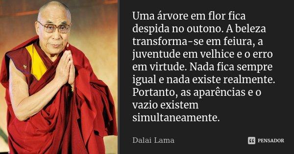 Uma árvore em flor fica despida no outono. A beleza transforma-se em feiúra, a juventude em velhice e o erro em virtude. Nada fica sempre igual e nada existe re... Frase de Dalai Lama.