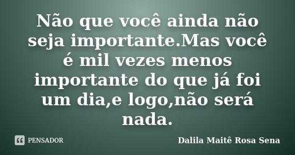 Não que você ainda não seja importante.Mas você é mil vezes menos importante do que já foi um dia,e logo,não será nada.... Frase de Dalila Maitê Rosa Sena.