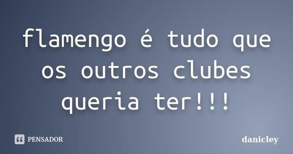 flamengo é tudo que os outros clubes queria ter!!!... Frase de danicley.