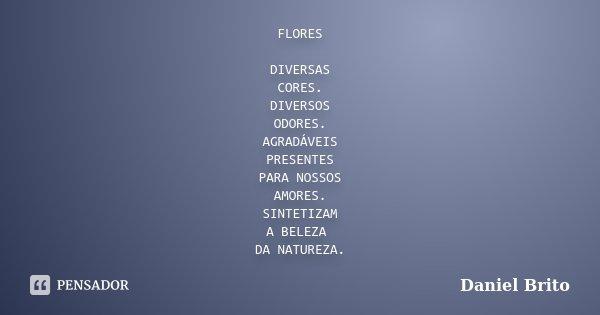 FLORES DIVERSAS CORES. DIVERSOS ODORES. AGRADÁVEIS PRESENTES PARA NOSSOS AMORES. SINTETIZAM A BELEZA DA NATUREZA.... Frase de Daniel Brito.