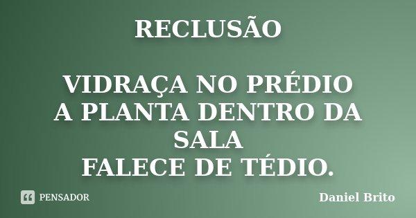 RECLUSÃO VIDRAÇA NO PRÉDIO A PLANTA DENTRO DA SALA FALECE DE TÉDIO.... Frase de Daniel Brito.