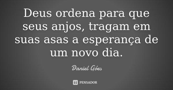 Deus ordena para que seus anjos, tragam em suas asas a esperança de um novo dia.... Frase de Daniel Góes.