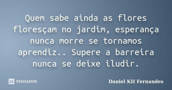Quem sabe ainda as flores floresçam no jardim, esperança nunca morre se tornamos aprendiz.. Supere a barreira nunca se deixe iludir.... Frase de Daniel KII Fernandes.