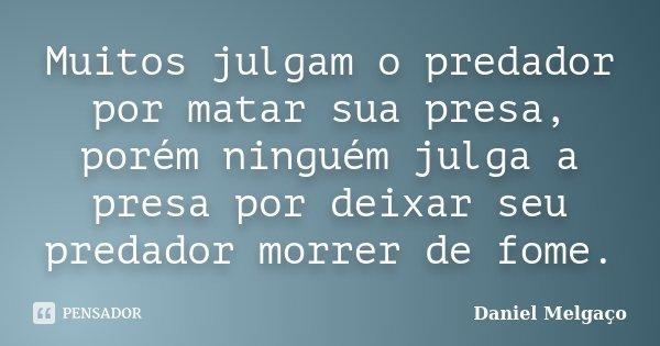 Muitos julgam o predador por matar sua presa, porém ninguém julga a presa por deixar seu predador morrer de fome.... Frase de Daniel Melgaço.