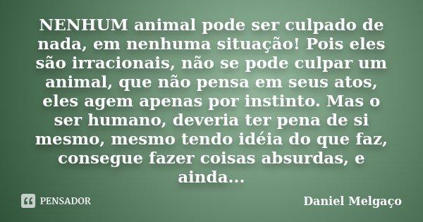 NENHUM animal pode ser culpado de nada, em nenhuma situação! Pois eles são irracionais, não se pode culpar um animal, que não pensa em seus atos, eles agem apen... Frase de Daniel Melgaço.