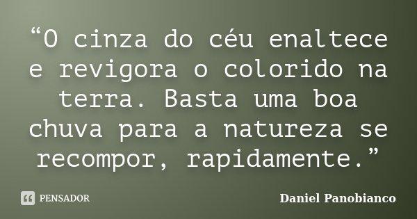 """O cinza do céu enaltece e revigora o colorido na terra. Basta uma boa chuva para a natureza se recompor, rapidamente.""... Frase de Daniel Panobianco."