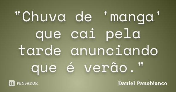 """""""Chuva de 'manga' que cai pela tarde anunciando que é verão.""""... Frase de Daniel Panobianco."""