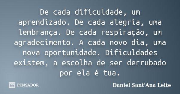 Um Agradecimento Por Cada Dia: De Cada Dificuldade, Um Aprendizado. De... Daniel Sant Ana