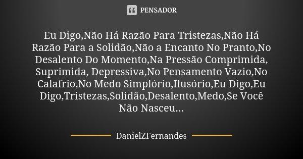Eu Digo,Não Há Razão Para Tristezas,Não Há Razão Para a Solidão,Não a Encanto No Pranto,No Desalento Do Momento,Na Pressão Comprimida, Suprimida, Depressiva,No ... Frase de DanielZFernandes.