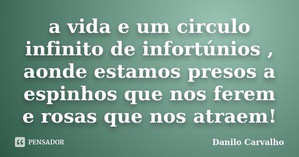 a vida e um circulo infinito de infortúnios , aonde estamos presos a espinhos que nos ferem e rosas que nos atraem!... Frase de Danilo Carvalho.