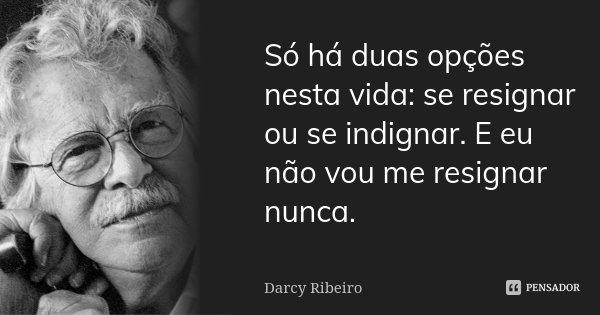 Só há duas opções nesta vida: se resignar ou se indignar. E eu não vou me resignar nunca.... Frase de Darcy Ribeiro.