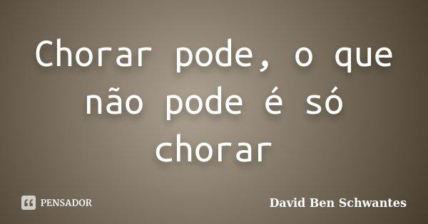 Chorar pode, o que não pode é só chorar... Frase de David Ben Schwantes.