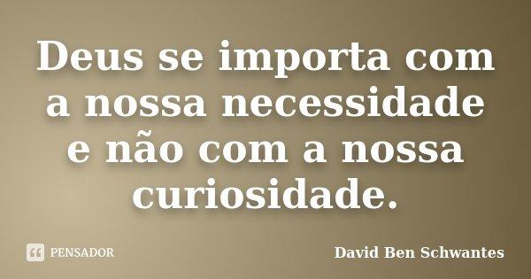 Deus se importa com a nossa necessidade e não com a nossa curiosidade.... Frase de David Ben Schwantes.