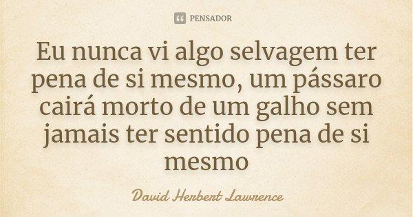 Eu Nunca Vi Algo Selvagem Ter Pena De Si David Herbert Lawrence
