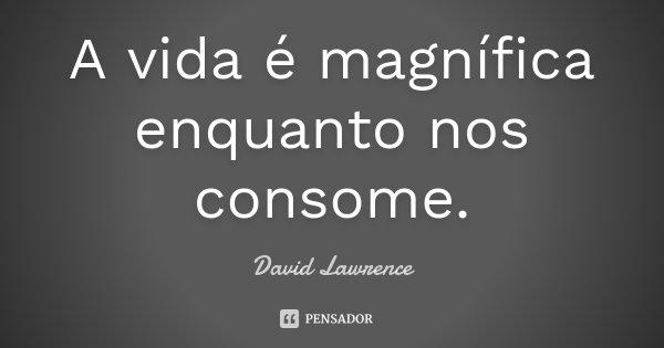 A vida é magnífica enquanto nos consome.... Frase de David Lawrence.